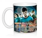 Шаблон Potter